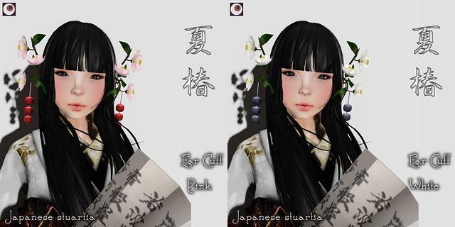 *NAMINOKE*Japanese Stuartia - 夏椿