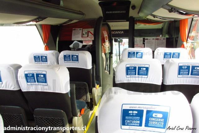 Moraga Tour | Santiago - Curicó | Neobus New Road N10 380 - Scania / FYBX17 (2916)