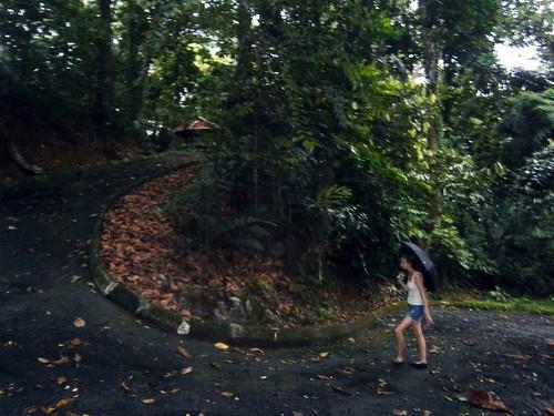 Briana Climbing the Road
