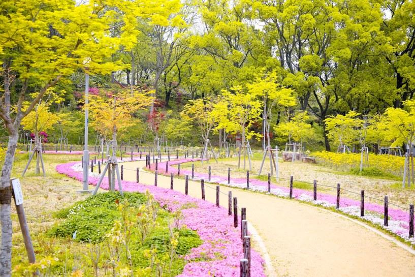 2015 大阪城 Kansai 183