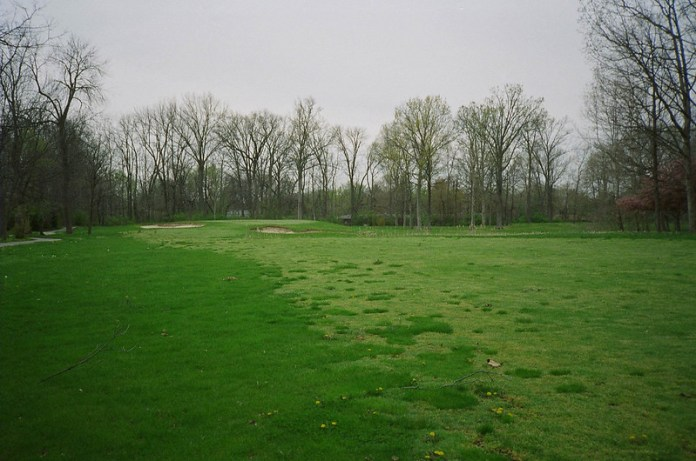 On the abandoned golf course