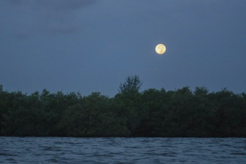 Indian River Sunrise and Moonset-44