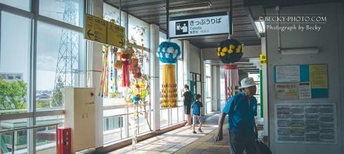 【日本】。三井Outlet Park仙台港 日本仙台購物折扣退稅 │松島海岸一日遊