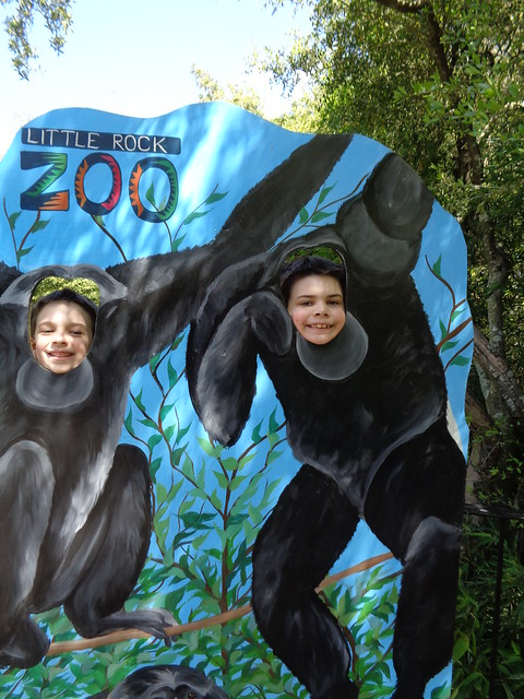 Shug and Shugie at Little Rock Zoo