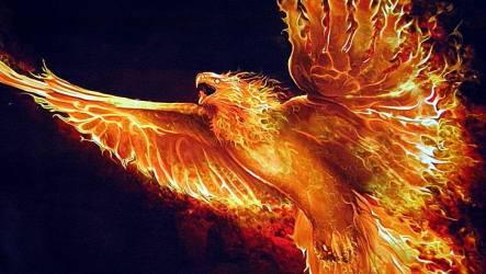 HD wallpaper: flame mythology wing darkness phoenix fire fantasy art Wallpaper Flare