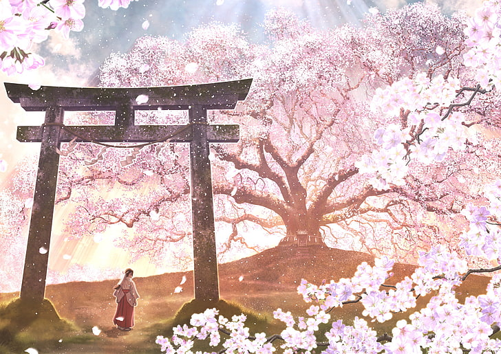 Hd Wallpaper Anime Original Blossom Cherry Blossom Flower Girl Oriental Wallpaper Flare