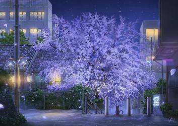 HD wallpaper: anime scenic park cat night stars buildings street lights Wallpaper Flare