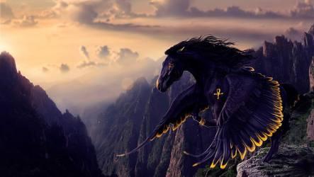 HD wallpaper: black horse fantasy art fantasy world sky mythical creature Wallpaper Flare