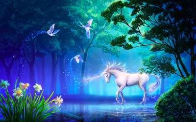 HD wallpaper: Beautiful Unicorn in Forest Fantasy Computer Desktop Wallpapers HD 2560×1600 Wallpaper Flare