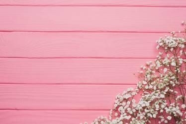 Pink color 1080P 2K 4K 5K HD wallpapers free download Wallpaper Flare
