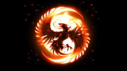 HD wallpaper: darkness flame phoenix greek mythology feather wing fire Wallpaper Flare