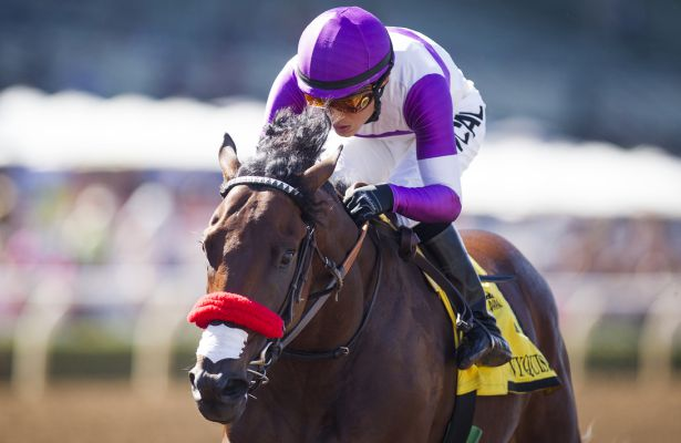 Mo S Your Old Man Nyquist Will Win 2016 Kentucky Derby