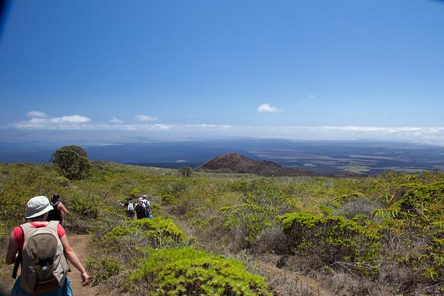 Galapagos Islands-281