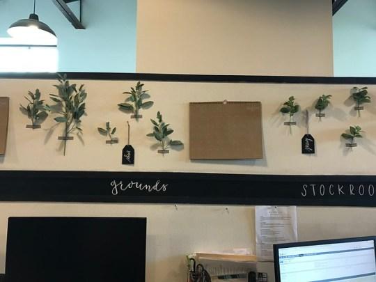 Magnolia Offices