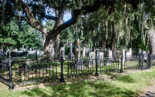Magnolia Cemetery-019