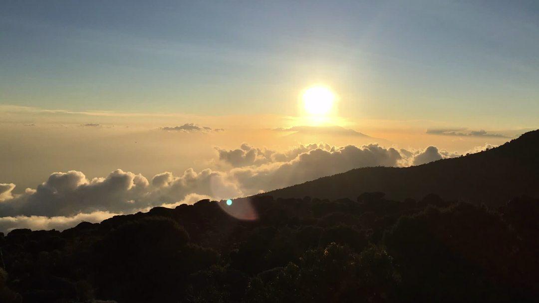 Kilimanjaro Sunshine