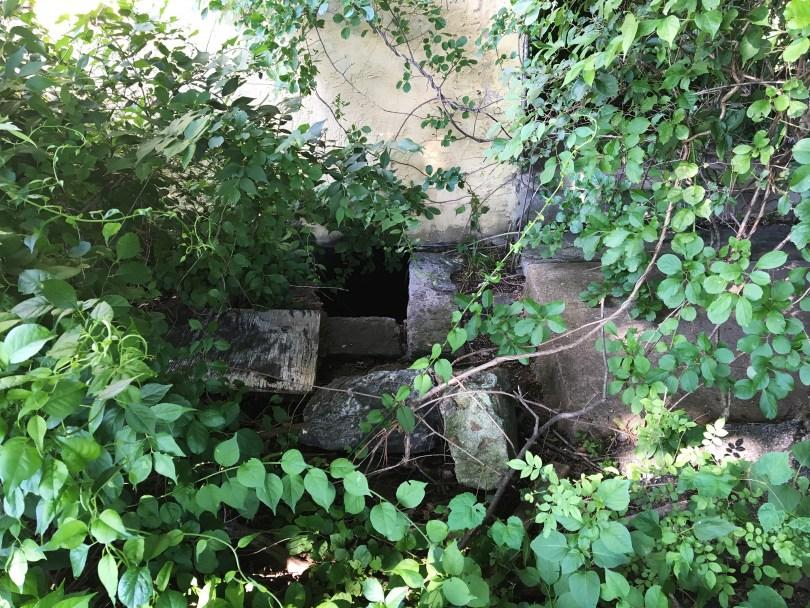 richard-ashbridge-mansion-exton-basement