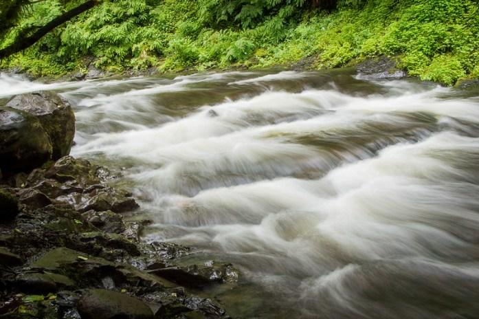 Multnomah Falls Rapids
