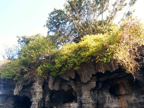 Caves at Tanah Lot Bali