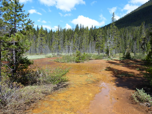 Things to do in Banff and Jasper: Marble Canyon and Paint Pots in Kootenay National Park