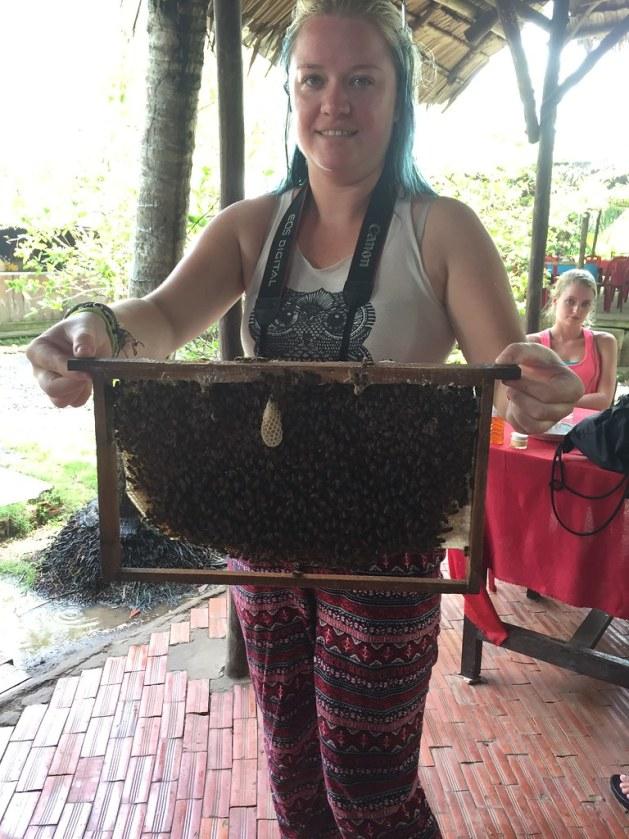 mekong delta bees vietnam