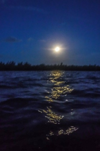 Indian River Sunrise and Moonset-34
