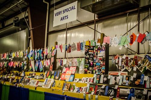 Western North Carolina Mountain Fair-50