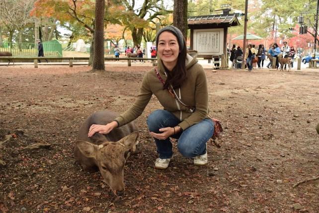 Nara Wild Deer 19