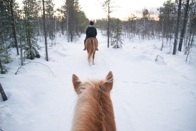Maastorastastusta Levillä. Polar Lights Tours.