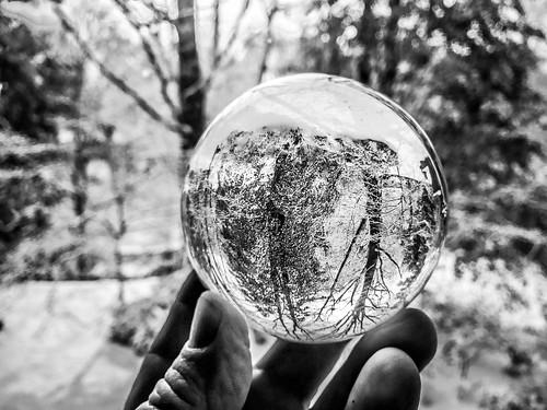 Snow Globe-003
