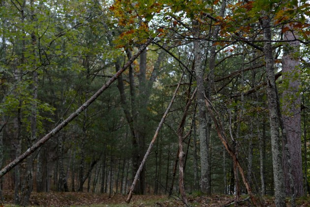 Fall Camping 2016