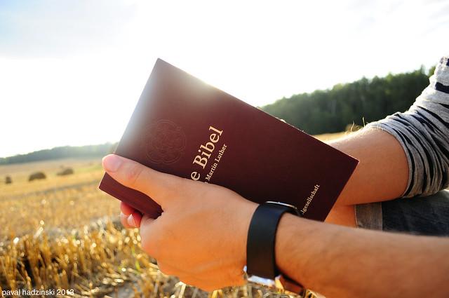 reaping | 4. Bible
