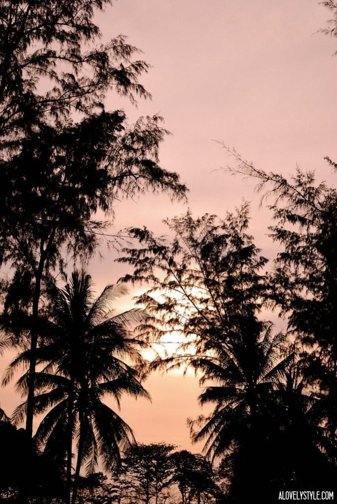 sunsetinspo