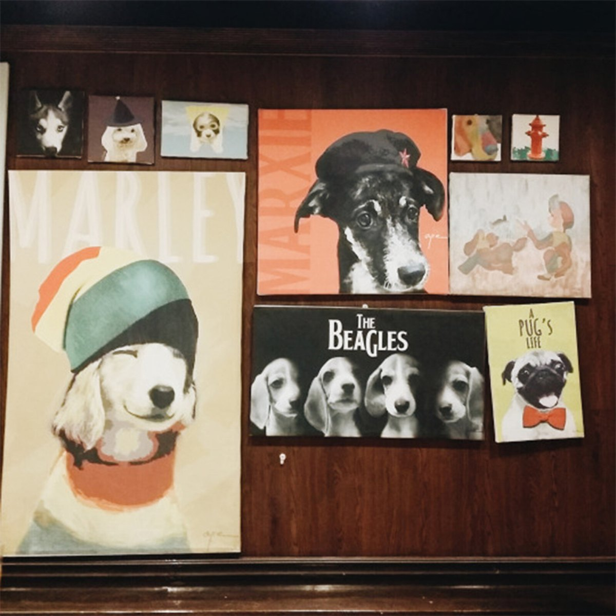 Barkin Blends Dog Cafe