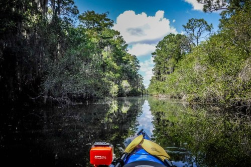 Lowcountry Unfiltered at Okefenokee-090