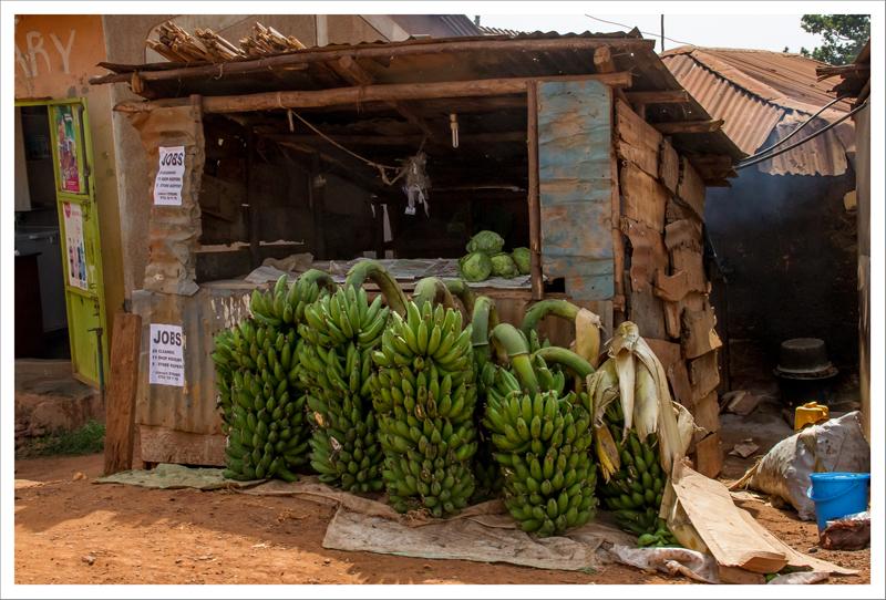 Kampala y Entebbe-18