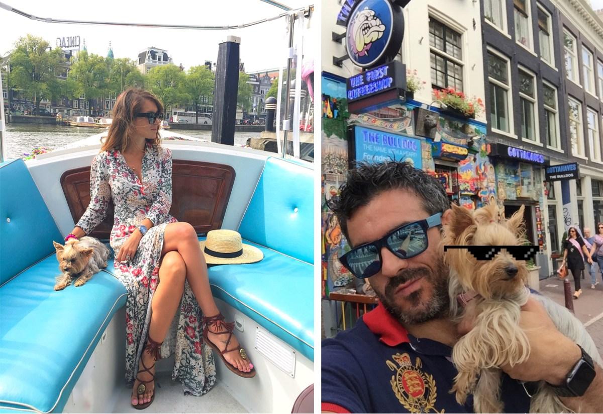 Amsterdam con Perro, Amsterdam con Mascotas Amsterdam con perro Visitar Amsterdam con perro 29431764845 b68aa16552 o