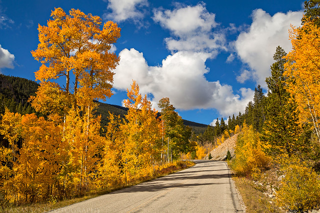 Cottonwood Pass Colors