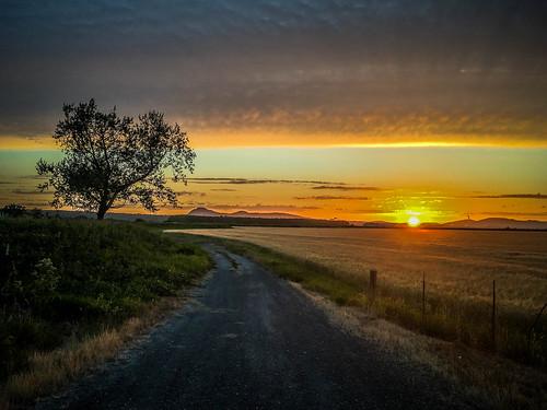 Skagit Valley Sunset-011