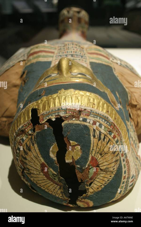 Alabama Anniston Museum Of Natural History Egyptian Mummy