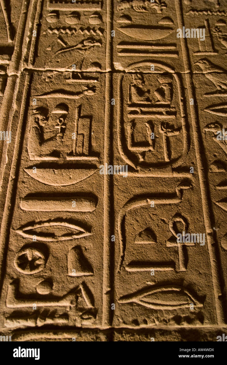 Ancient egyptian hieroglyphics wall year of clean water