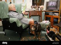 Images of Old Ladies Watching TV