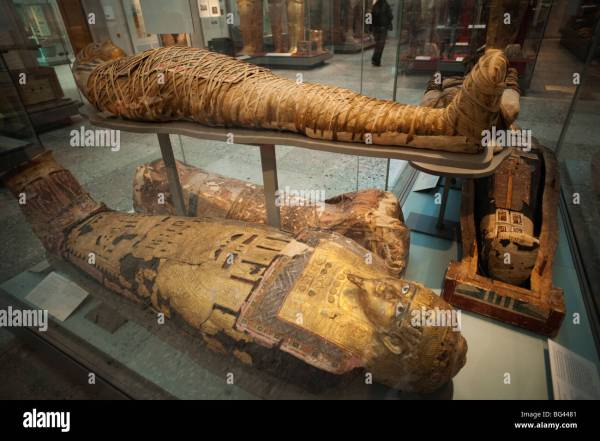 England London British Museum Egyptian Mummies Stock
