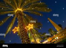 Palm Trees Decorated With Christmas Lights In Normandy