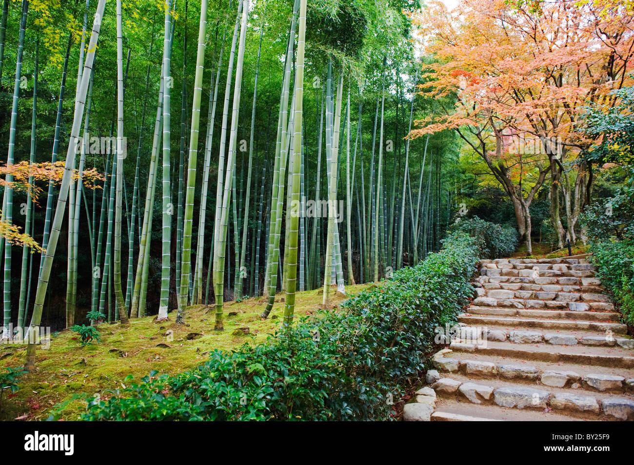Asia. Japan. Kyoto. Sagano. Arashiyama. Jojakko ji (Jojakkoji) Temple Stock Photo. Royalty Free Image: 33854333 - Alamy