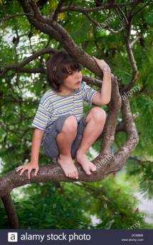 Child Sitting On a Tree Branch