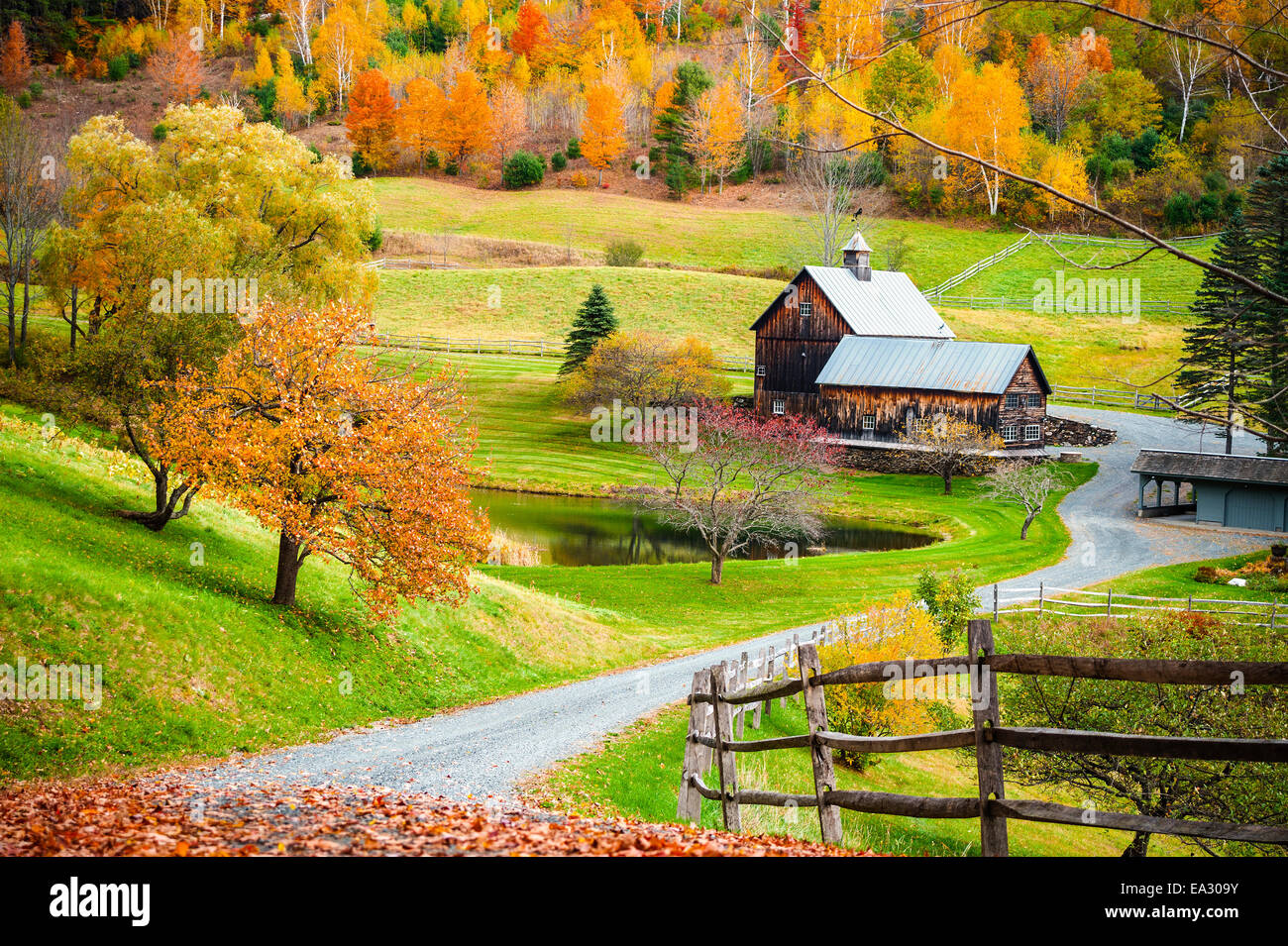 New Hampshire Fall Foliage Wallpaper Fall Foliage New England Countryside At Woodstock