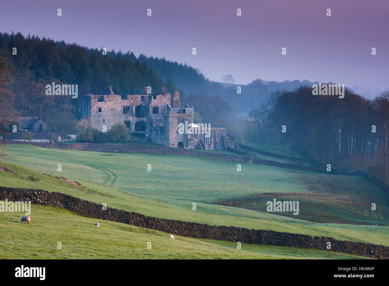 Winter sunrise over the ruins of sunlit Barden Tower, in beautiful, misty, undulating, Dales countryside - North Stock Photo