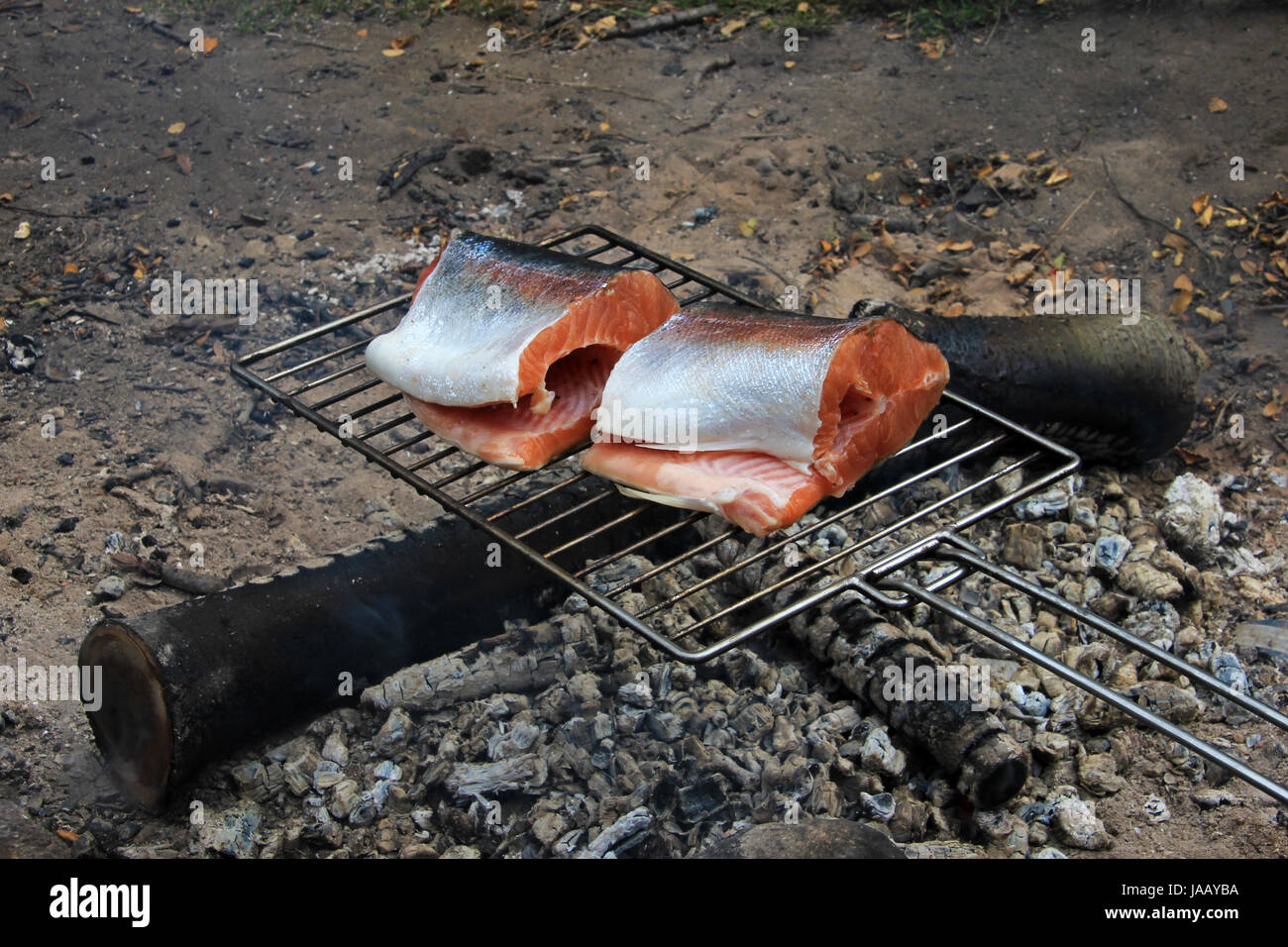 Fresh salmon trout steaks on grill Stock Photo