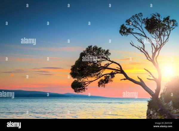 Colorful Landscape Sunset